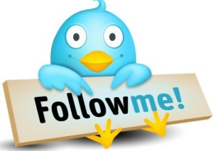twitter-follow-500x356